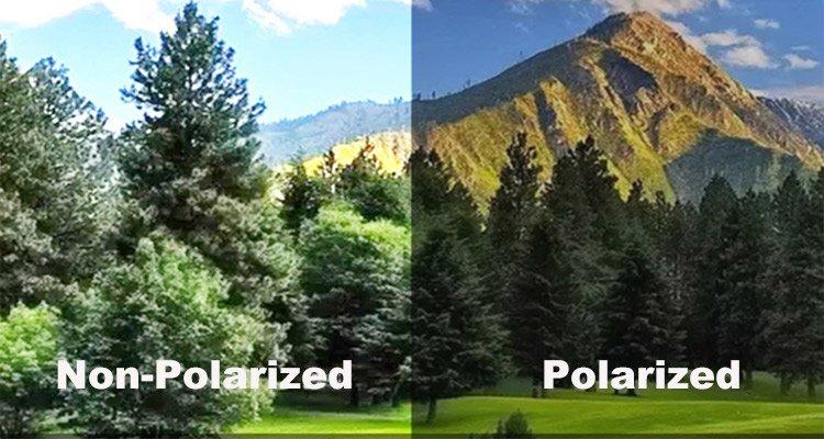 Polarized Vs. Non Polarized