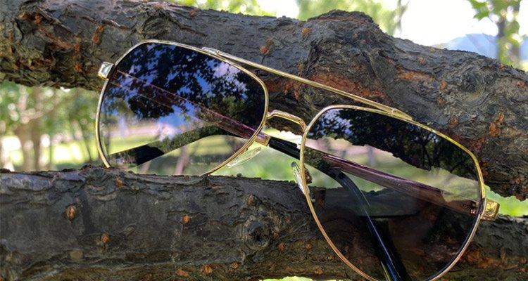 Metal Sunglasses On Tree